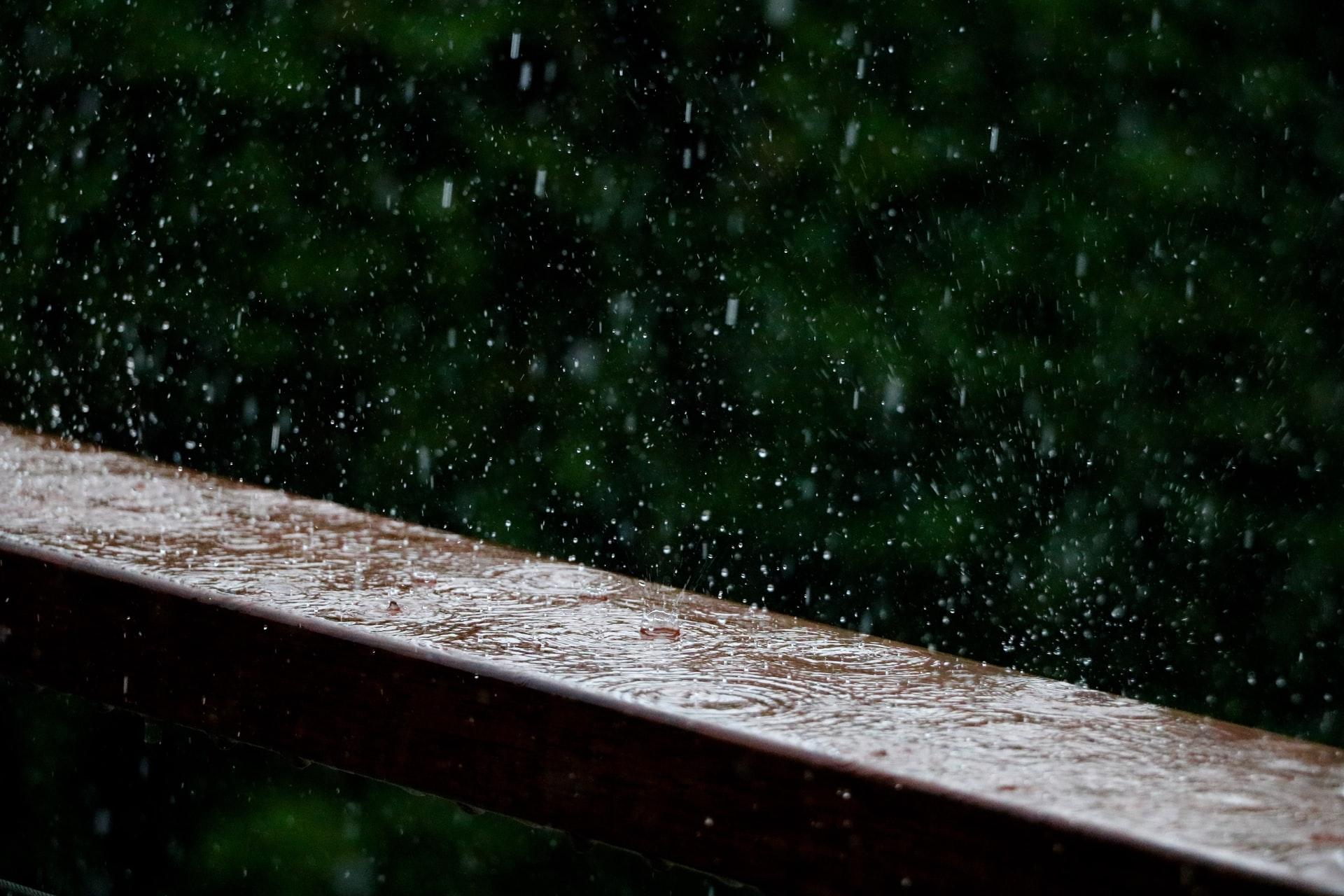Privathaushalt – Wofür lässt sich das Regenwasser nutzen